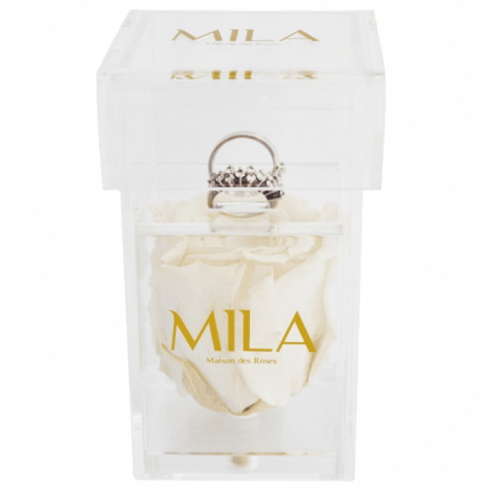 Mila Acrylic Single Ring