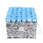 Mila-Roses-01505 Mila Limited Edition Cochain - Baby blue