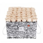 Mila-Roses-01510 Mila Limited Edition Cochain - Champagne